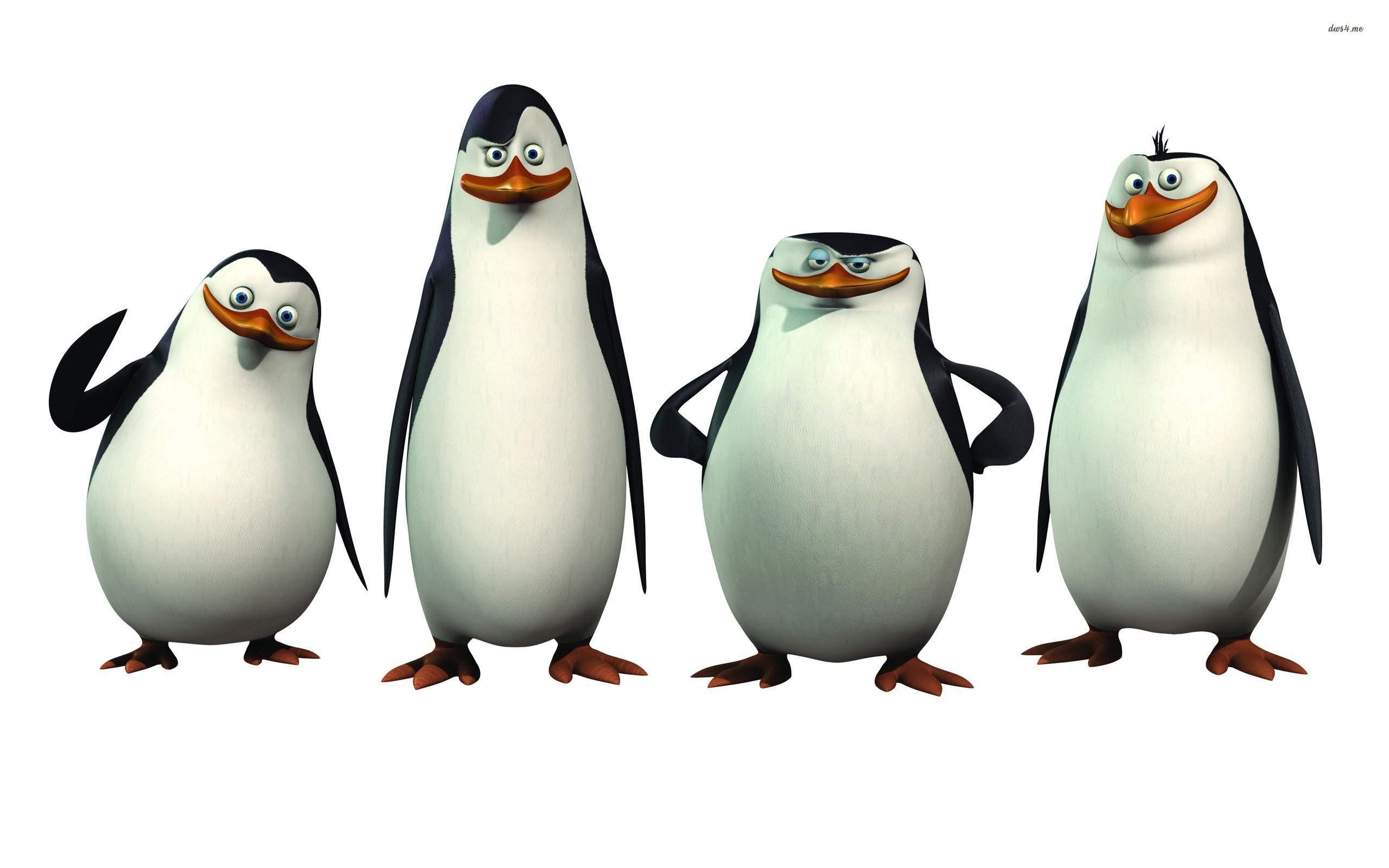 The Penguins of Madagascar wallpaper.
