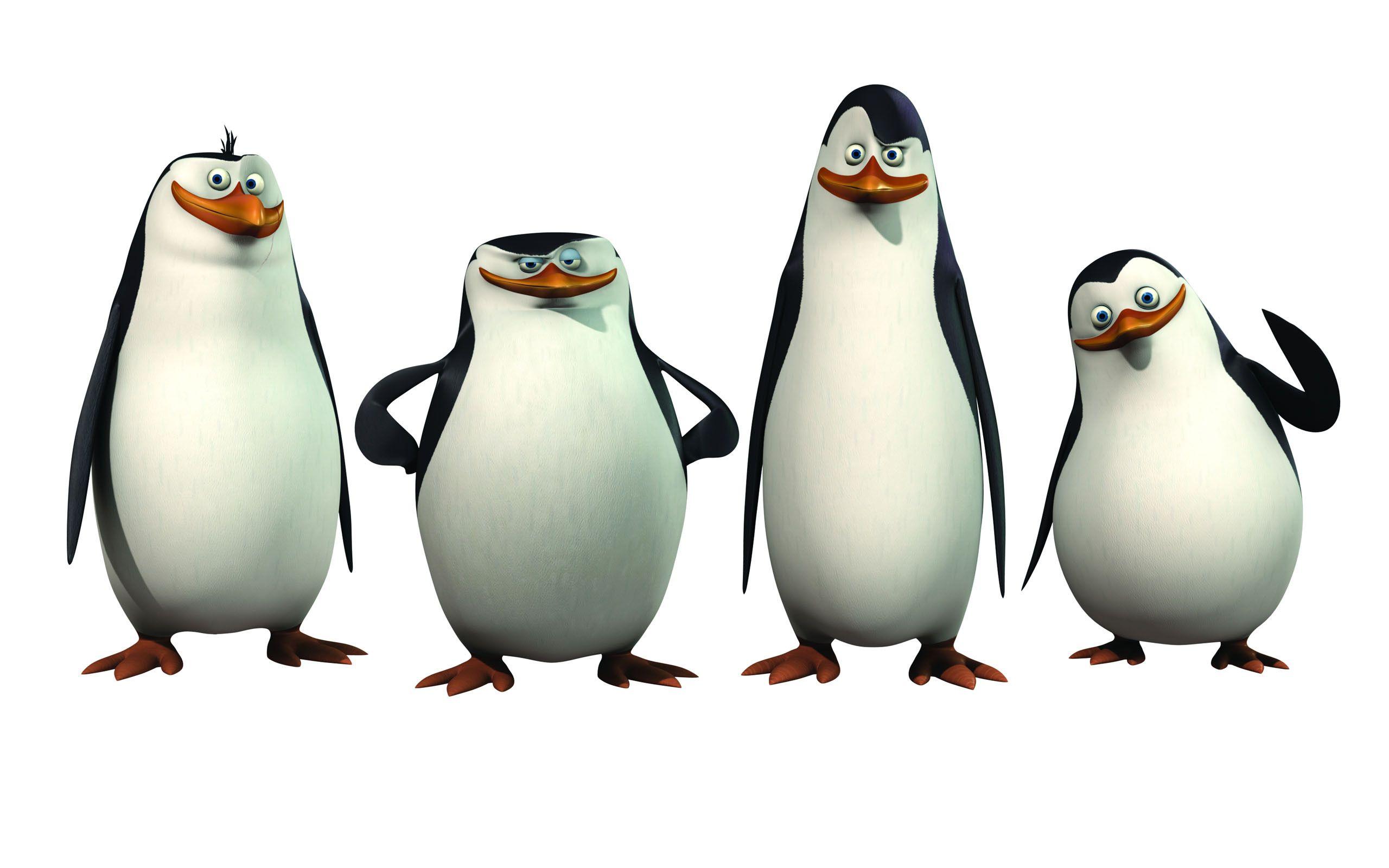 Cartoon Penguins Images.