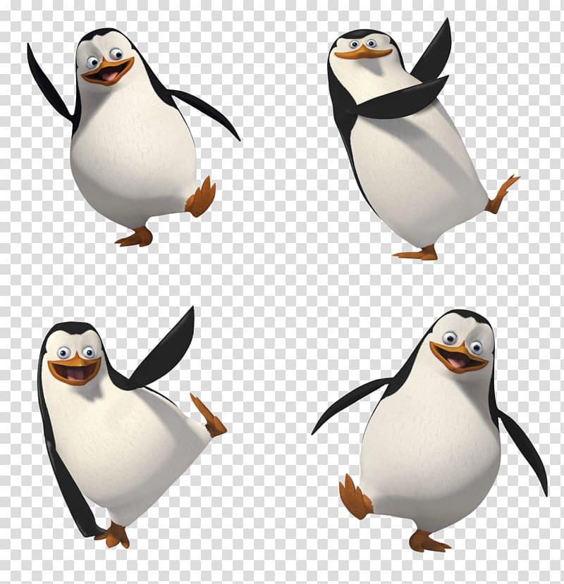 Penguins of Madagascar illustration, Madagascar , Penguins.