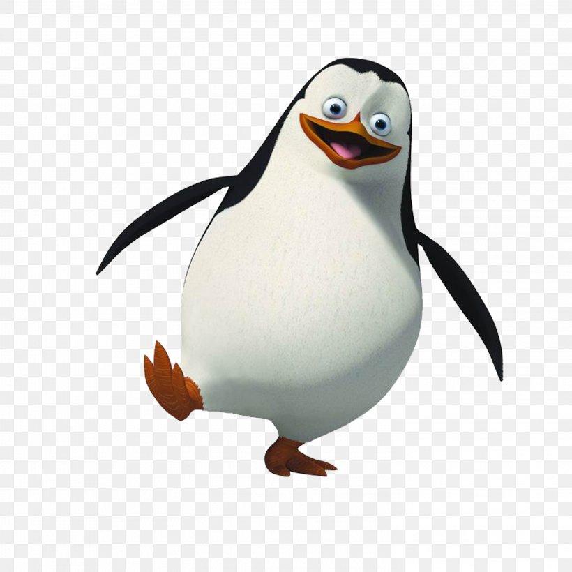 Skipper Rico Penguin Madagascar Clip Art, PNG, 2953x2953px.