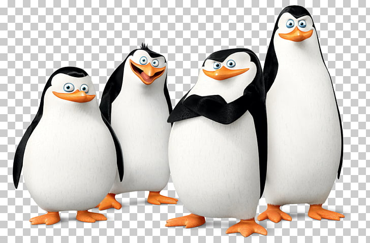 Madagascar penguins PNG clipart.