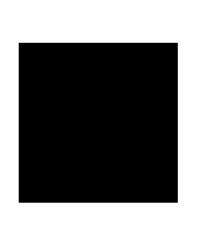 Logo Decal (4 Inch).