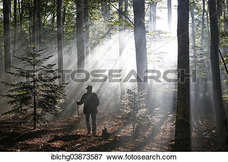 """Picture of """"Hiker, rays penetrating the morning mist in Boisgrand."""