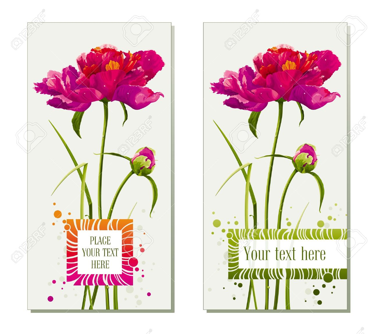 Floral Greeting Cards With Red Peony Flower And Bud Royalty Free.