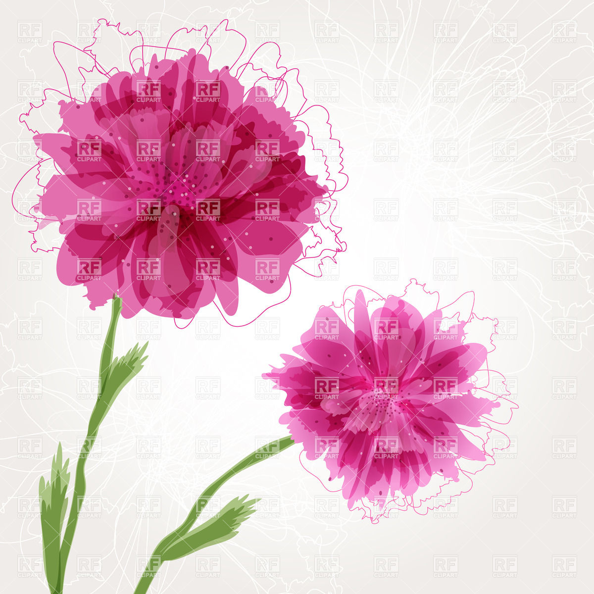 Peony flower with pink buds Vector Image #23263.