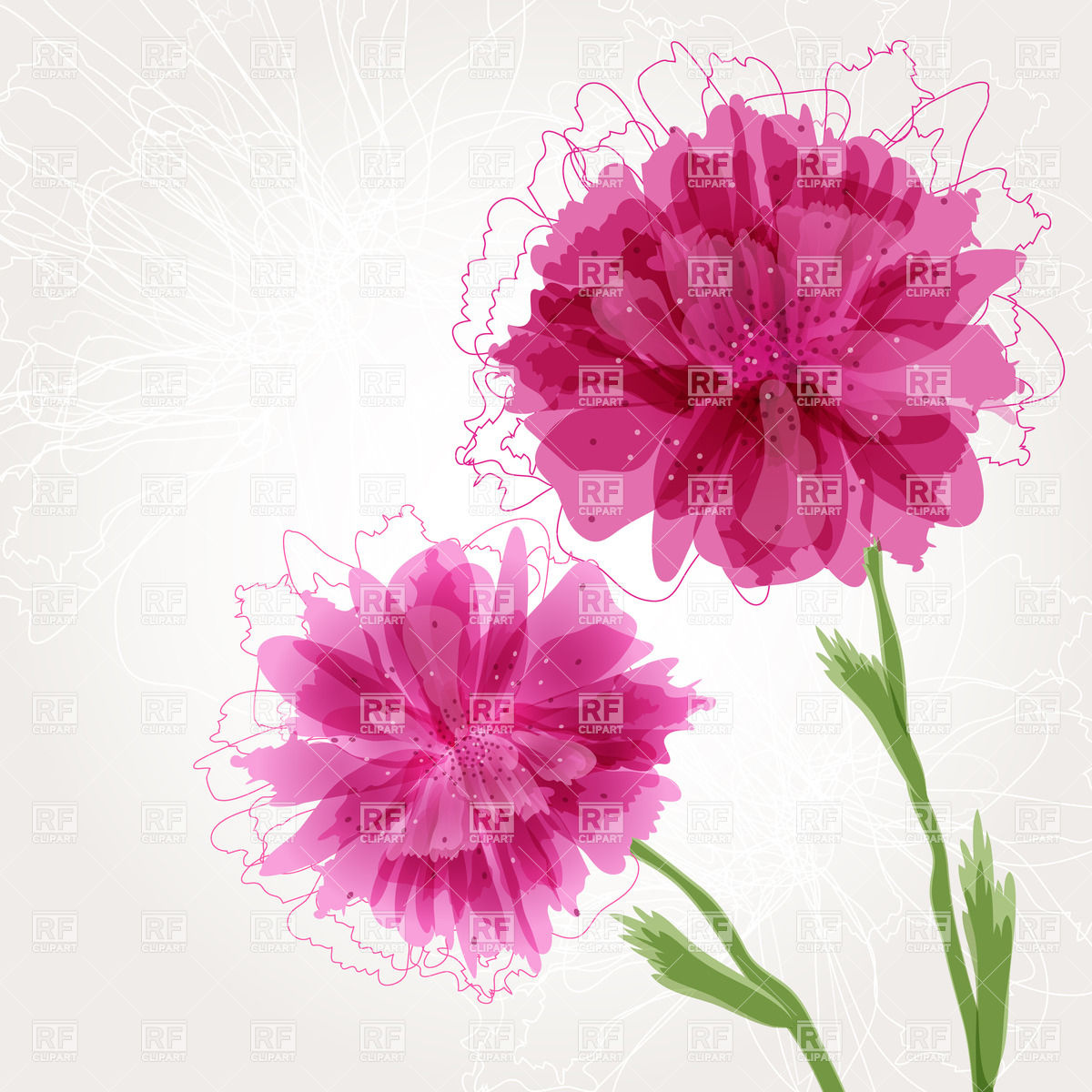 Peony Flower Borders Clipart.