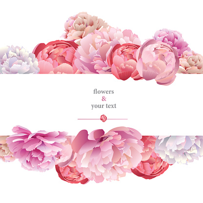 Peony Clip Art, Vector Images & Illustrations.