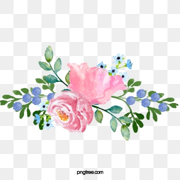 Watercolor Peonies PNG Images.