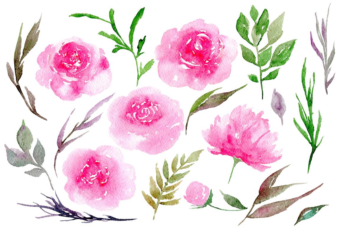 Watercolor pink peonies, 19 png.