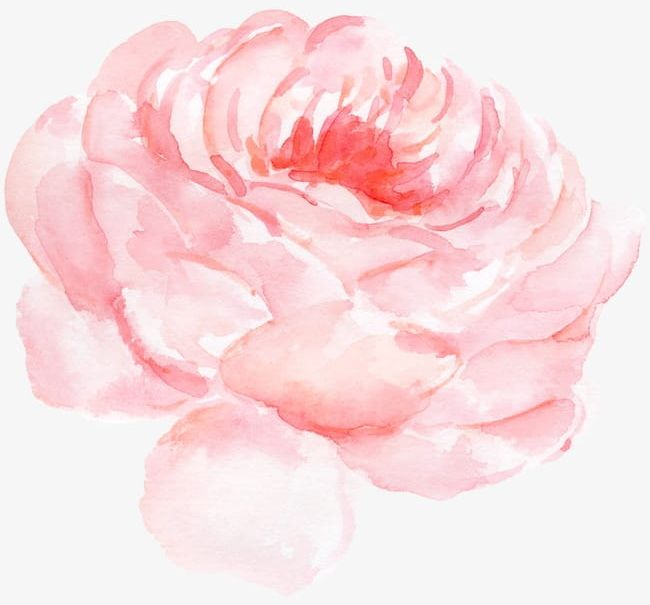 Peony Flower Watercolor Pattern PNG, Clipart, Backgrounds.