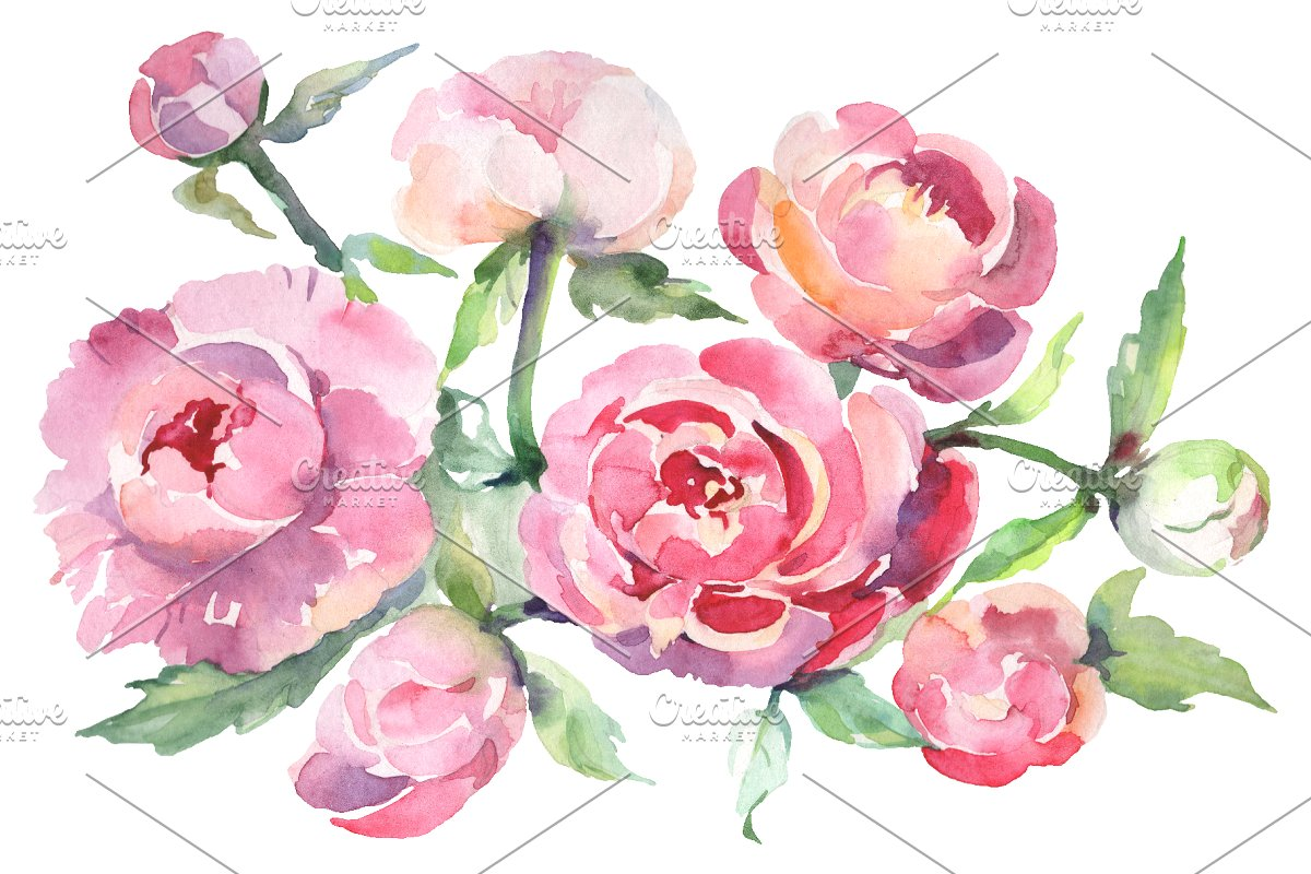 Bouquet with peonies Watercolor png.