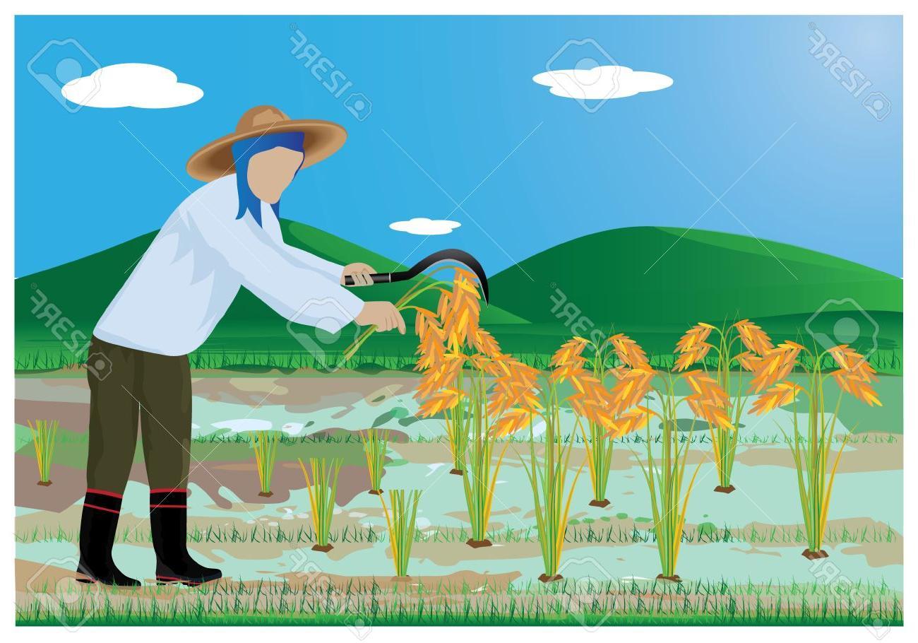 Top Farmer Planting Clip Art Vector Images » Free Vector Art.
