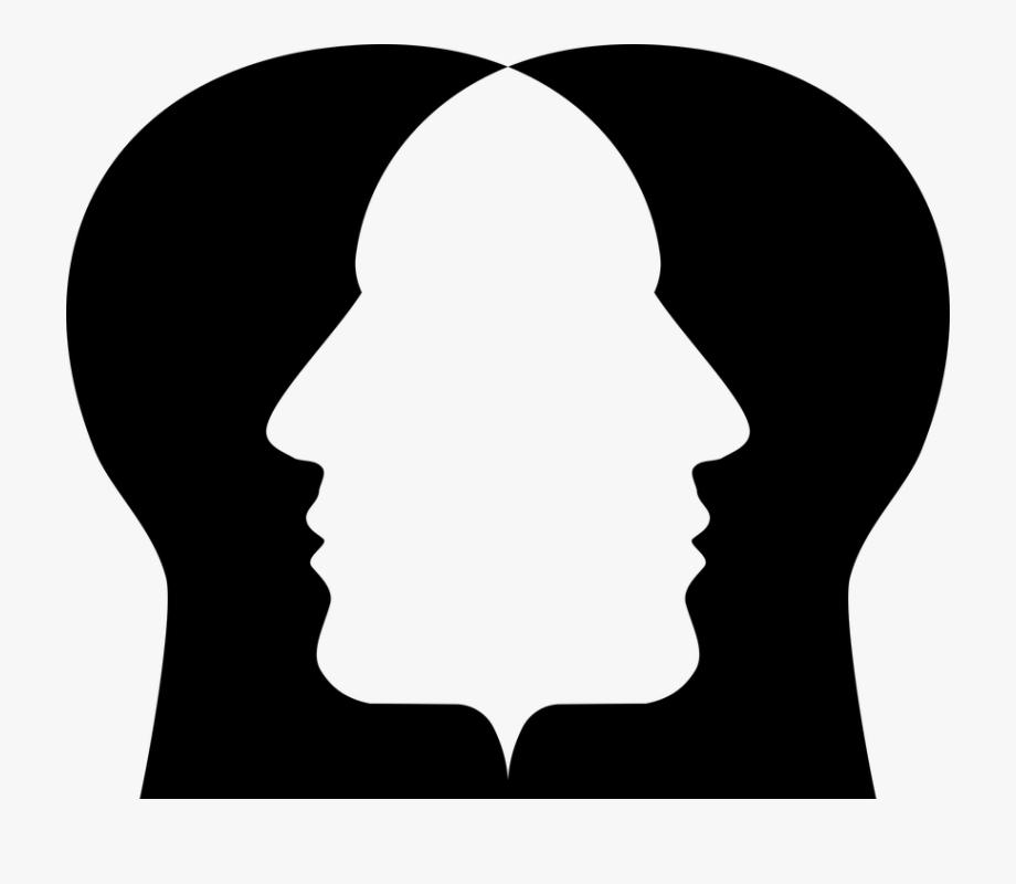 Free Photo Human Cranium Man People Male Head Persons.