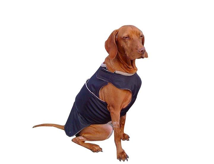 Dog clothes.
