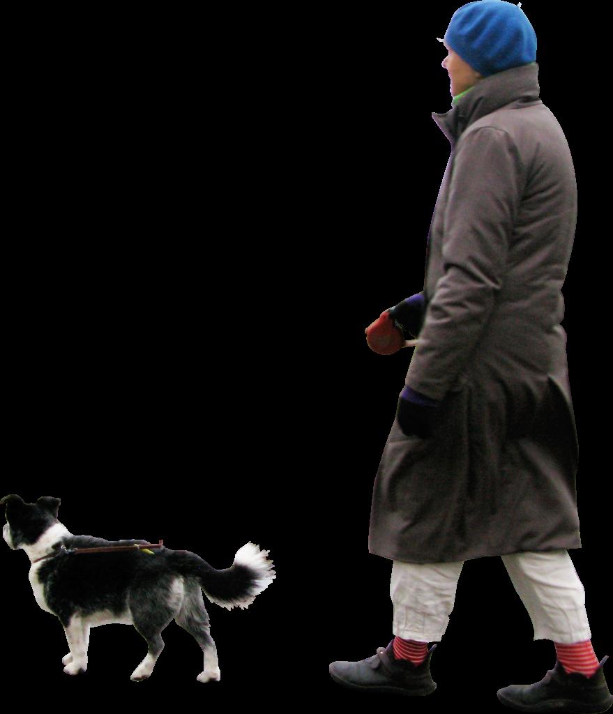 Walking Dog PNG Image.
