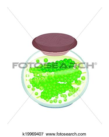 Clip Art of A Jar of Delicious Pickled Green Peppercorns k19969407.