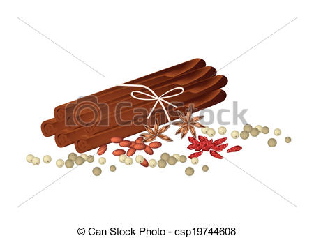 Vector Clipart of Dried Star Anise with Cinnamon Sticks and.