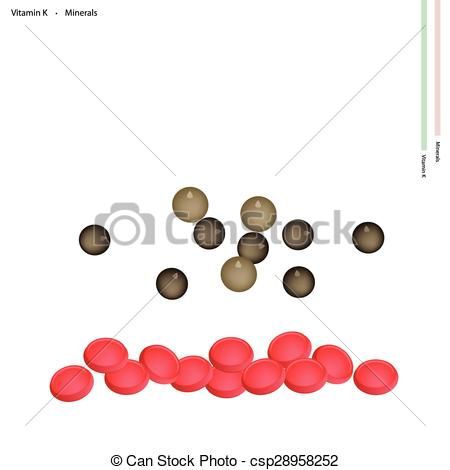 Clipart Vector of Dried Peppercorns with Vitamin K and Minerals.