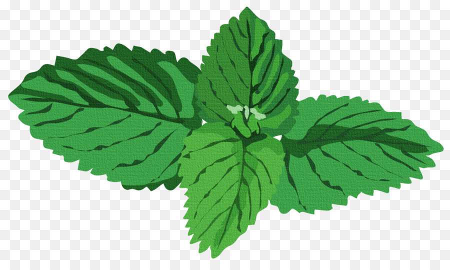 Green Leaf Background png download.
