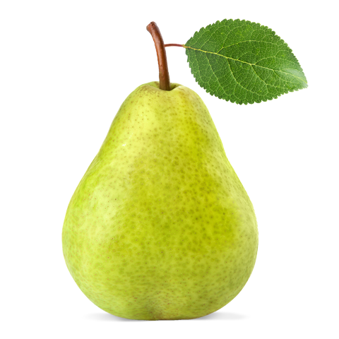 Pear,pear,Tree,Plant,Fruit,Leaf,Woody plant,Food,Accessory.