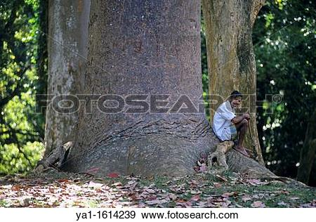 Stock Photograph of Local gardener sitting on root Queensland.