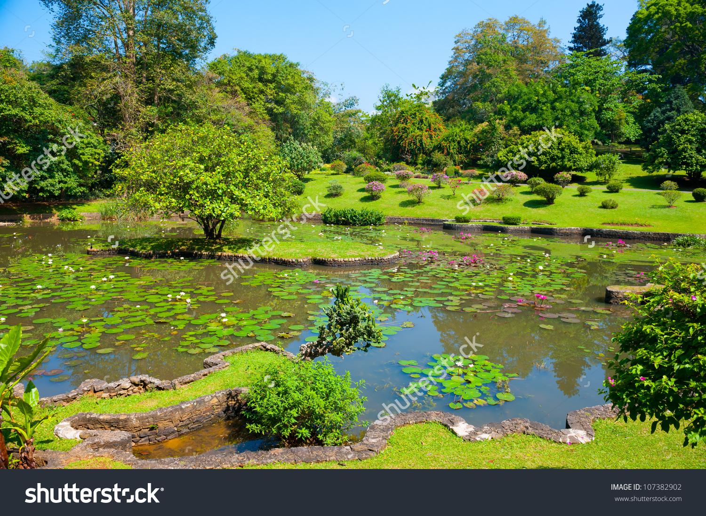 Botanical Garden Landscape In Peradeniya, Kandy, Sri.
