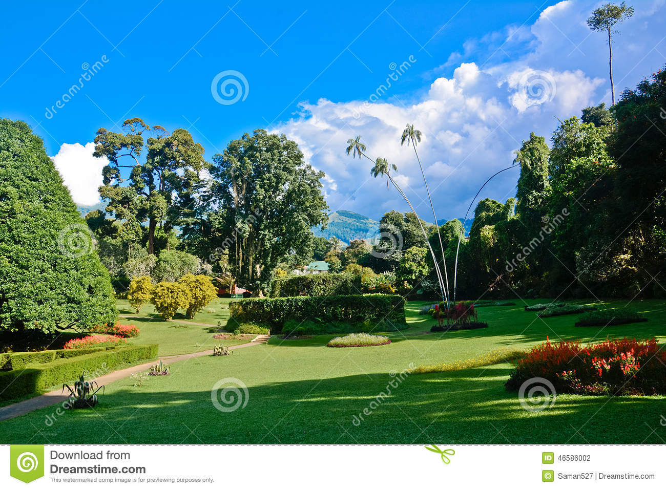 Peradeniya Stock Photos, Images, & Pictures.