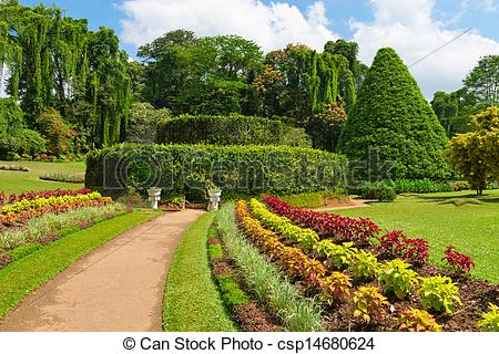 Stock Photo of Beautiful tropical botanical garden.