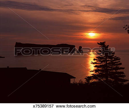 Picture of Perce Rock and evergreen tree at sunrise, Gaspesie.