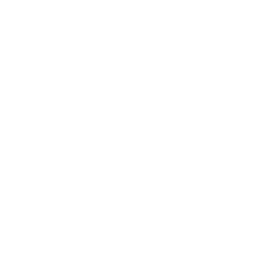 White percentage icon.