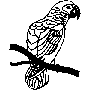 Perch Clipart.