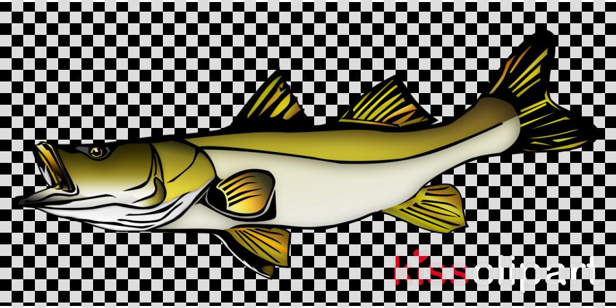 fish fish pike perch fin clipart.