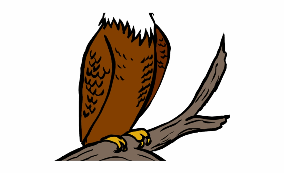 Falcon clipart perched bird, Falcon perched bird Transparent.