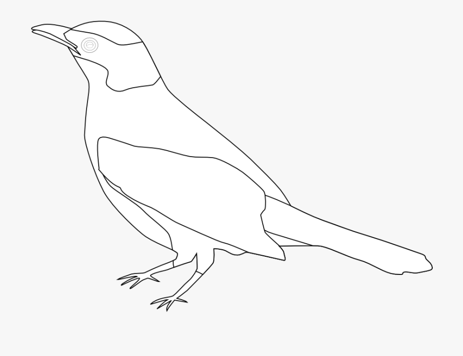 Perching Bird , Transparent Cartoon, Free Cliparts.