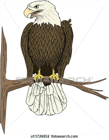 Perched Eagle Clip Art.