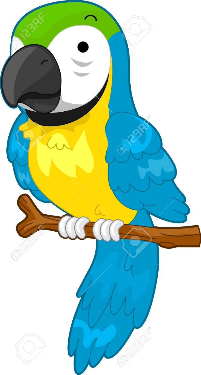 Illustration Of A Parrot On A Perch Stock Photo, Picture And.