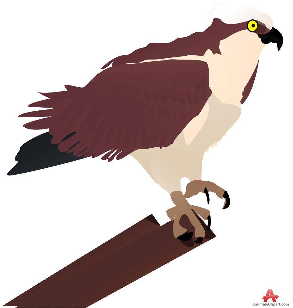 Hawk Perching on Tree Clipart.