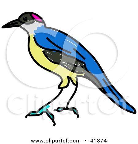 Royalty Free Stock Illustrations of Birds by Prawny Page 3.