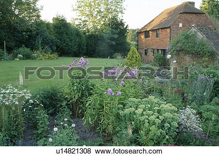 Pictures of View of suburban garden.