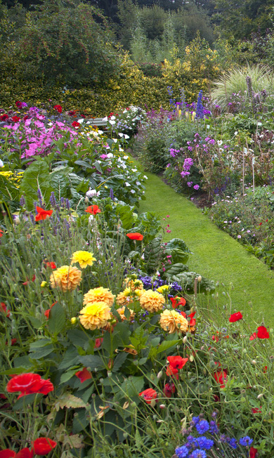 Images Of Garden Flower Borders.