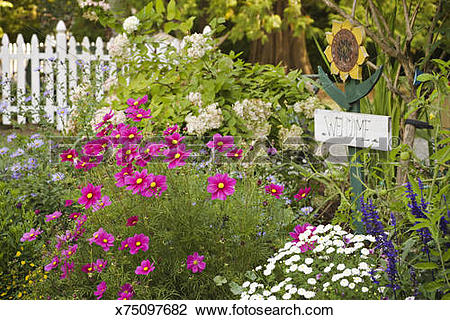Stock Photo of Welcome sign in perennial border x75097682.