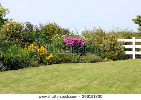 Perennial Border Stock Photos, Royalty.