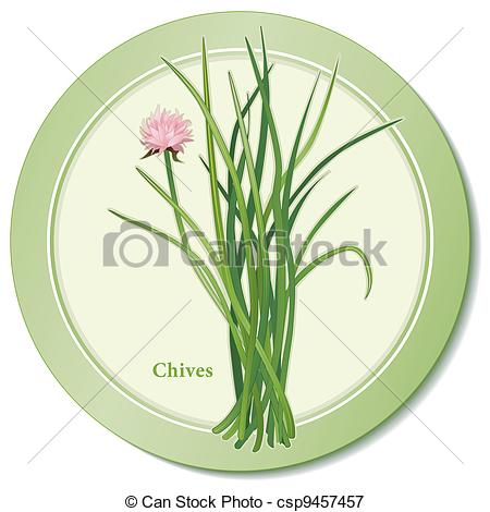 Vectors Illustration of Chives Herb Icon.