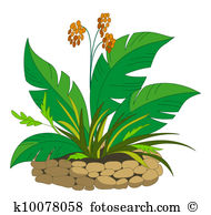 Perennial plant Illustrations and Clipart. 363 perennial plant.