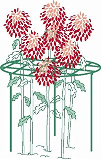 Amazon.com : The Peony Pal Perennial Plant Support.