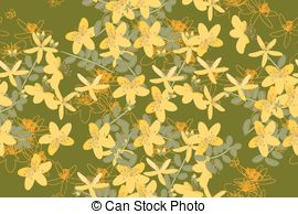 Vector Clip Art of Saint John's Wort or Hypericum perforatum.
