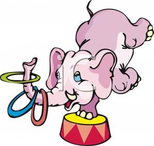 Circus Elephant Performing Tricks.