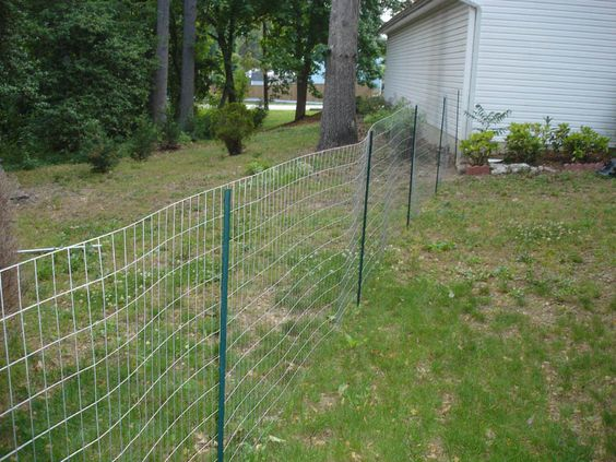 Clipart Backyard With Dog Fence Perimeter.
