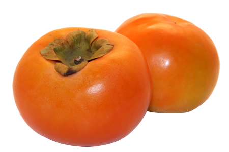 Nice Persimmon clipart.
