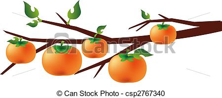 Stock Illustration of persimmon.